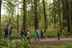 People walking through forest